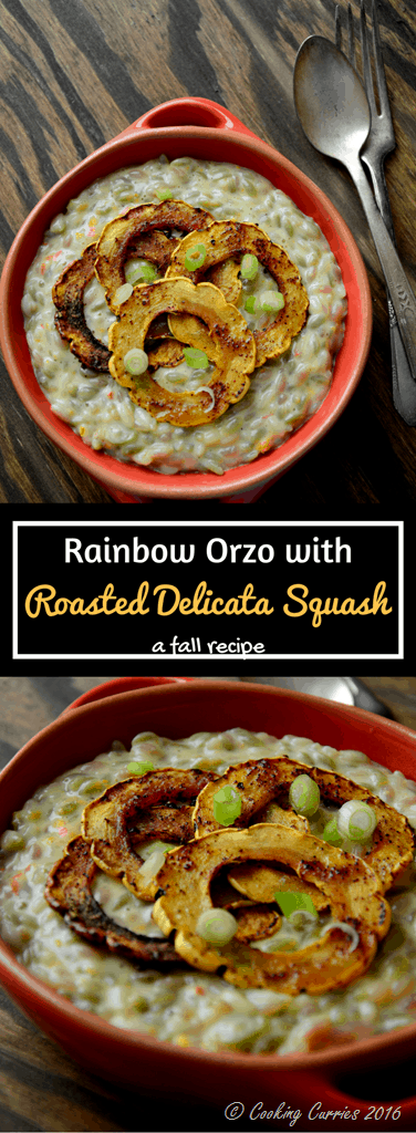 Rainbow Orzo in a Garlic Gruyere Sauce with Ancho Chile Roasted Delicata Squash - a fall recipe