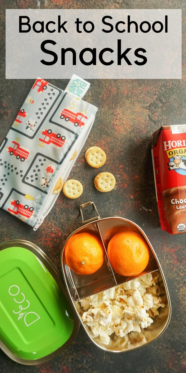 School Snack Packing Made Easy